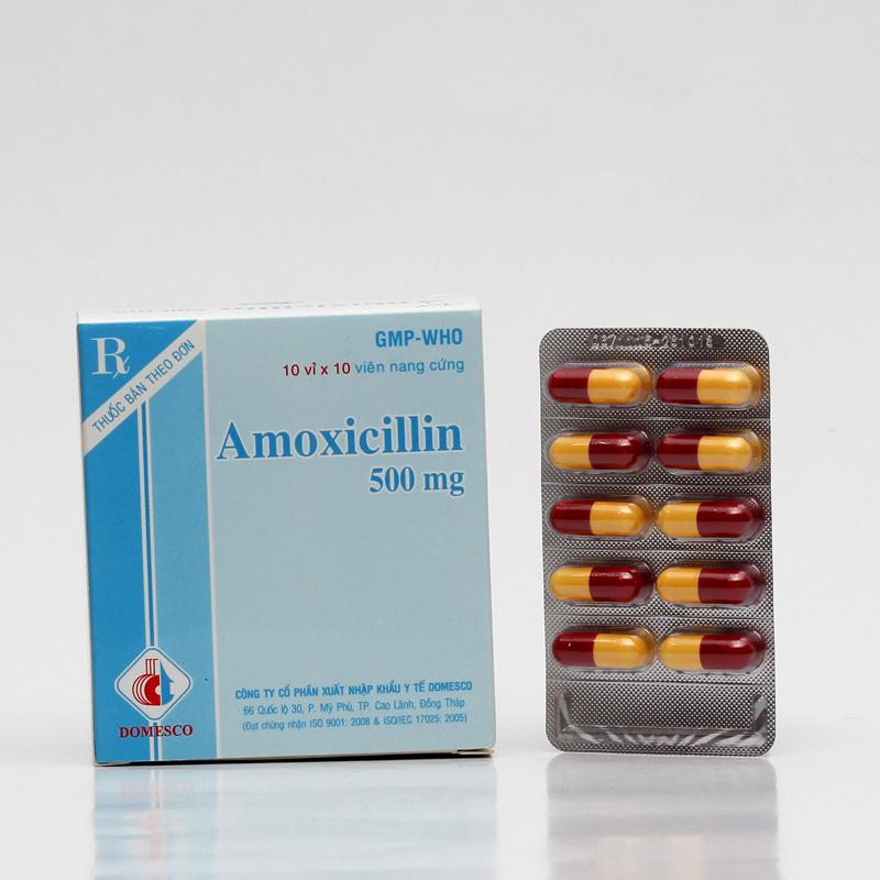 Amoxicillin là thuốc gì? Công dụng về liều dùng của thuốc Amoxicillin ra sao? 1