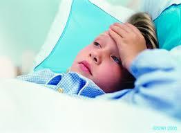 Sốt thương hàn và những dấu hiệu; triệu chứng nhận biết bệnh 1